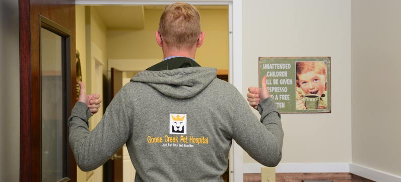 Goose Creek Pet Hospital open on Sunday
