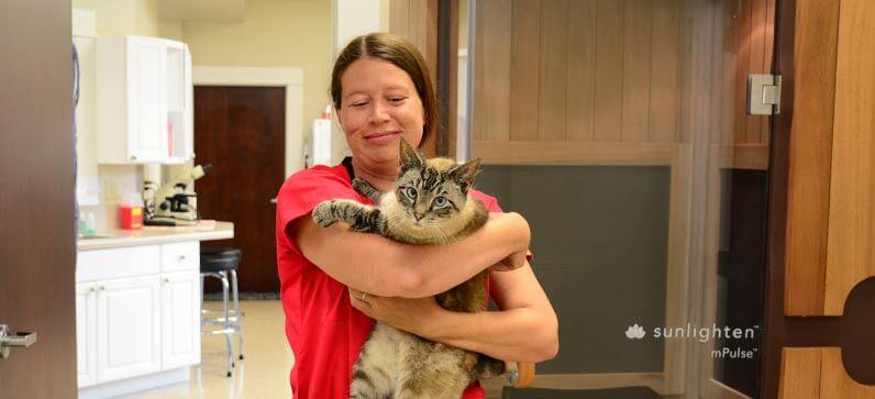 Veterinary Diagnostic Services in Franklin TN