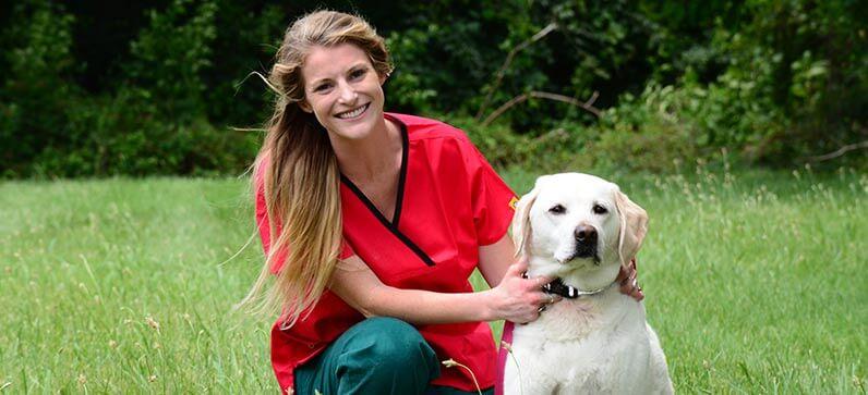 Pet Owner Resources at Goose Creek Pet Hospital